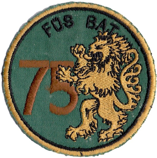 Picture of  Füs Bat 75 braun Löwe
