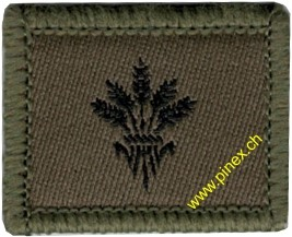 Picture of Supply soldier Swiss Army Function Insignia