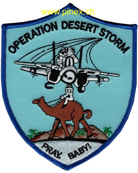"Picture of F-14 Tomcat Desert Storm ""Pray, Baby!"""