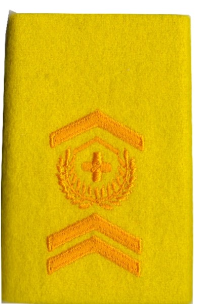 Picture of Warrant Officer Epaulette colours Armoured Corps