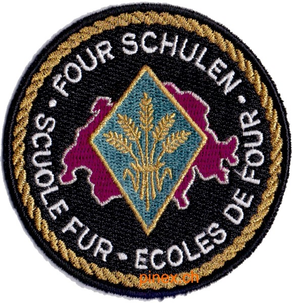 Picture of Fourier Schulen Schulbadge Armee 95