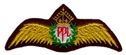 Photo de Privatpiloten Abzeichen PPL Wings