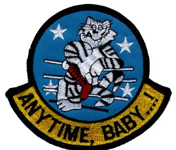 Picture of F 14 Tomcat Anytime Baby