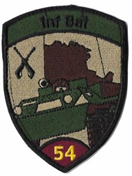 Photo de Inf Bat 54 violett mit Klett Infanteriebadge