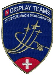 Bild von Morgarten Display Teams Patch blau