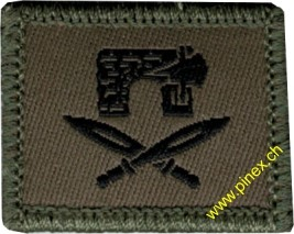 Picture of Installation security soldier Swiss Army Function Insignia