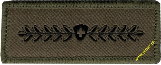 Picture of Swiss Army Militia Insignia