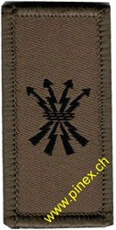 Picture of Signal corps / command support corps Swiss Army Branch Insignia