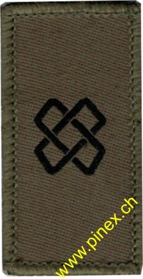 Picture of Logistic Corps Swiss Army Branch Insignia